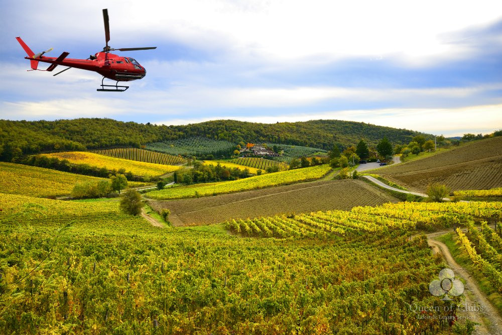 ABOVE THE SAINT EMILION VINEYARDS.jpg