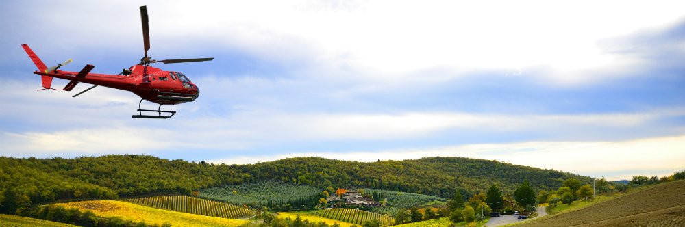 ABOVE THE SAINT EMILION VINEYARDS banner.jpg