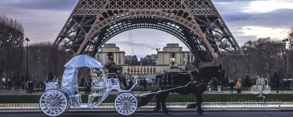 PARIS TOUR WITH A HORSE CARRIAGE BANNER.jpeg